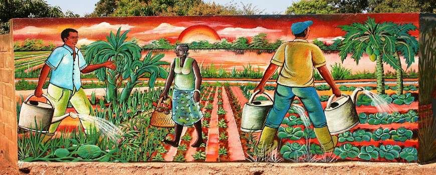 Visto Burkina Faso - Quadro