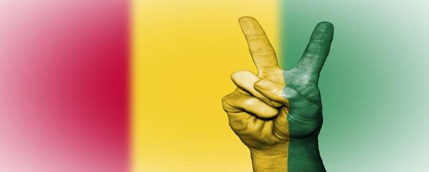 Visto Guinea - Bandiera Pace